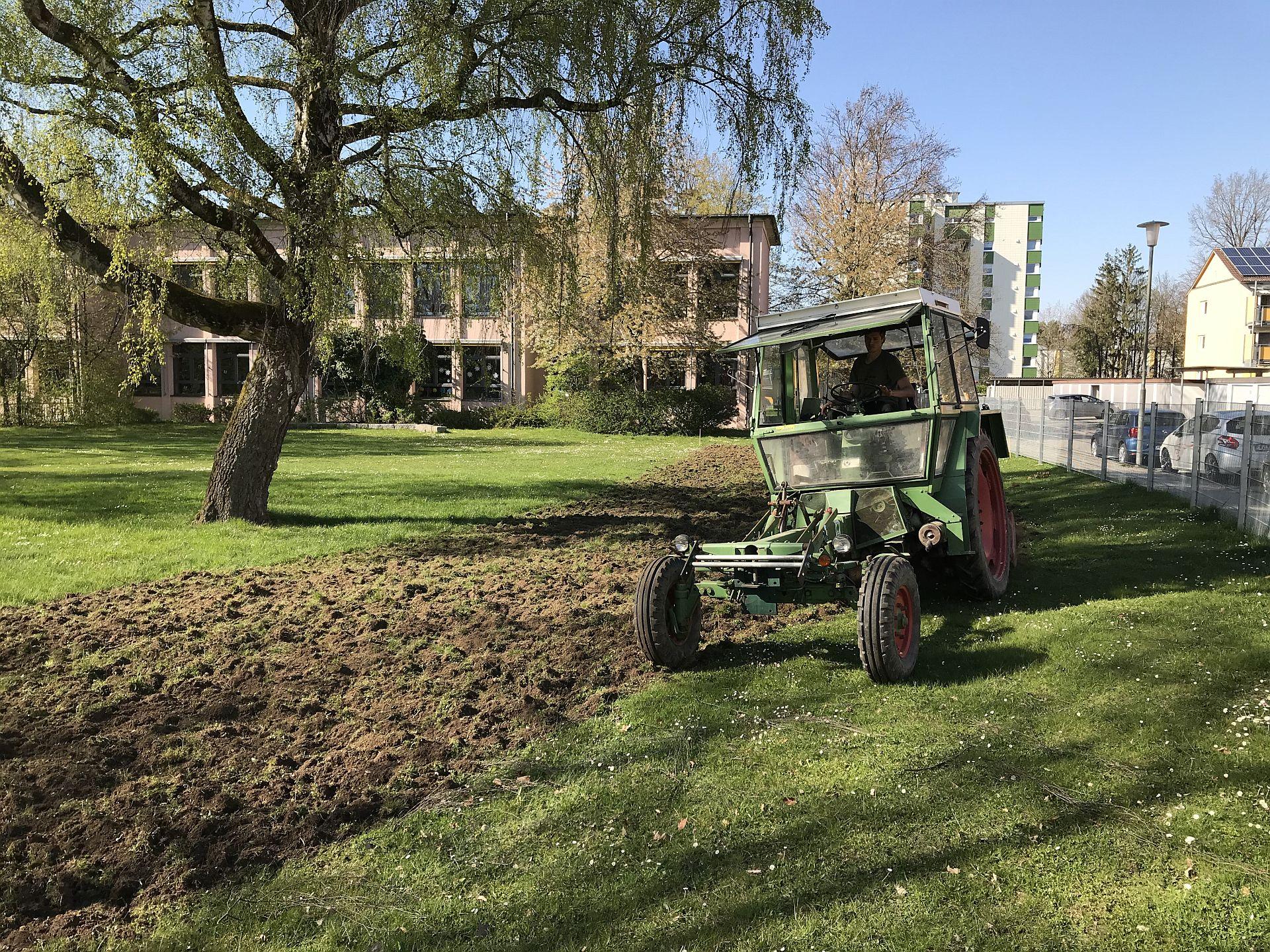 Ein Traktor bereitet die Wiese für die Pflanzen des Naturlernraums vor
